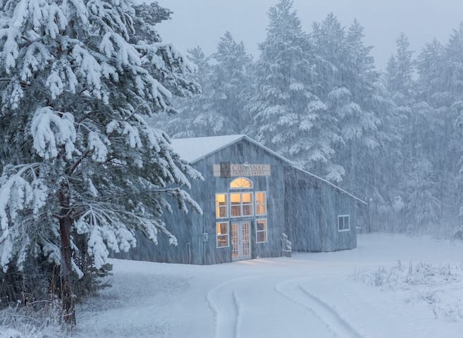 ColdSnap Studio, set in the north woods.
