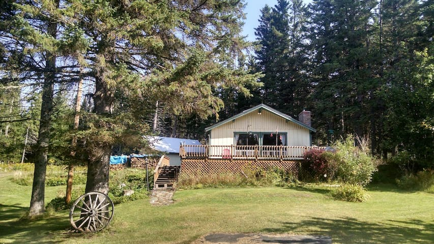 Moose River Cottage