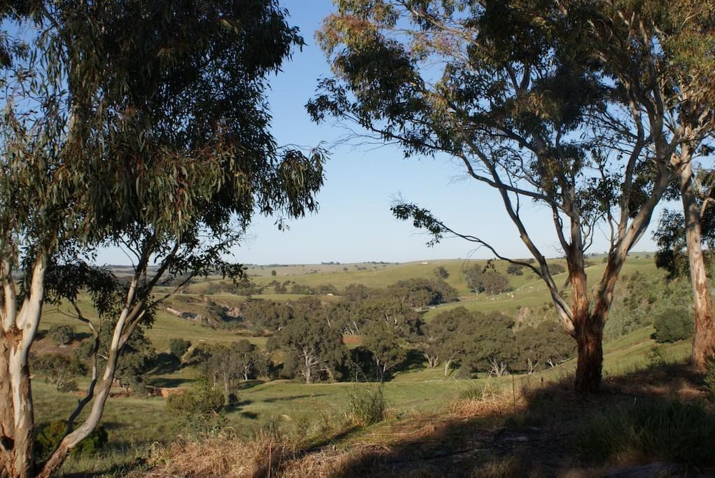 View over the stable ruins to the North Para River