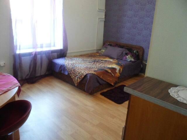 Студия в самом центре Риги - Rīga - Apartment