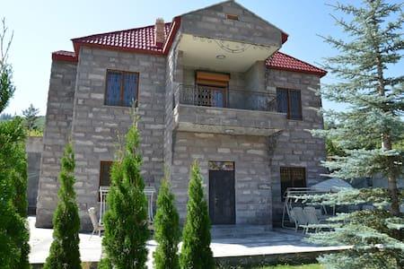 Family House - Tsaghkadzor - Hus