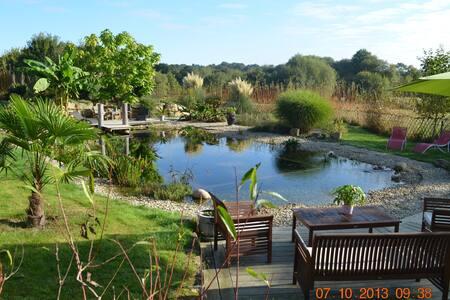 Longère bretonne piscine écologique - Brech