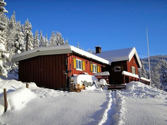 Winter sports and recreation - Nord-Aurdal - Houten huisje