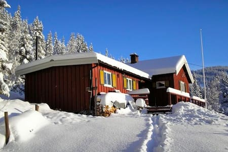 Winter sports and recreation - Nord-Aurdal - Cabin