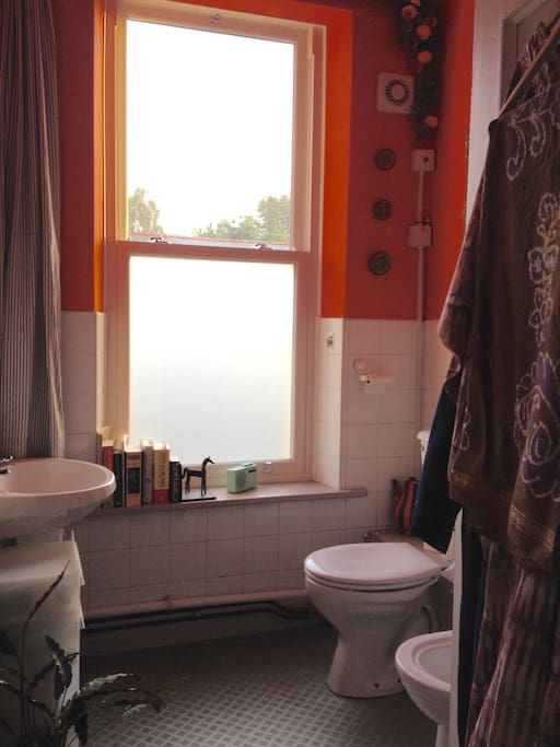 Shower room includes lavatory and bidet