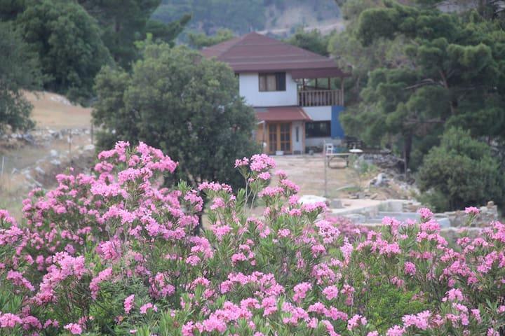 Antalya da farklı bir tatil ve doğa macerası