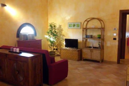 Accogliente appartamento mansardato - Cassina De' Pecchi - Daire