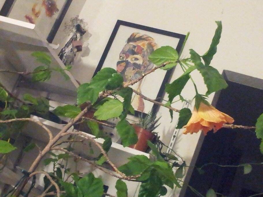 lots of art and plants  Beaucoup de d'art et plantes