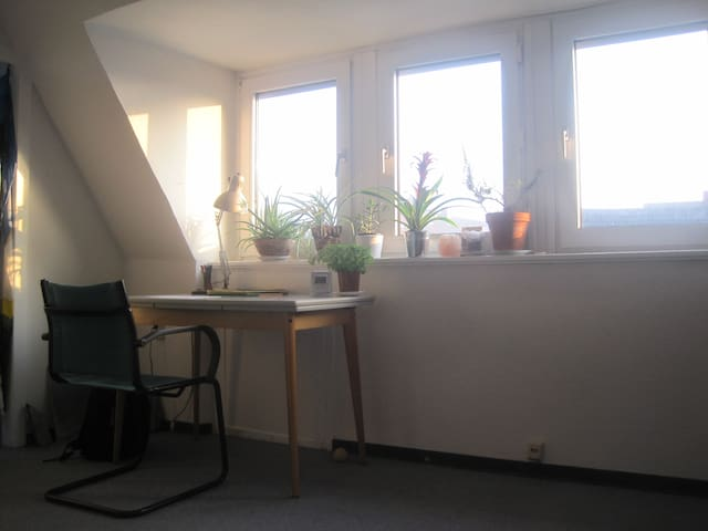 central, cosy, complete appartment - Osnabrück - Appartement