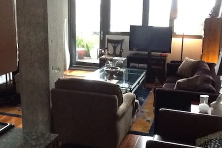 Clean/Quiet/South Loop with Parking - Chicago - Loft