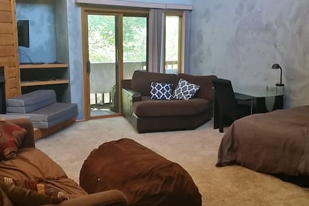 Converted Living Room