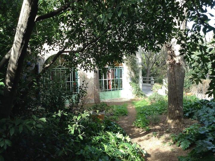 Chambres dans grande villa 19e siècle