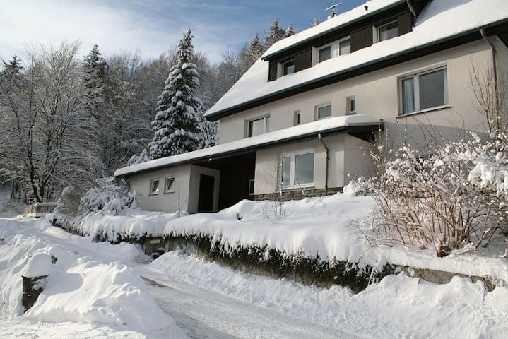 Charming Villa On The Forest Edge - Brilon - Talo