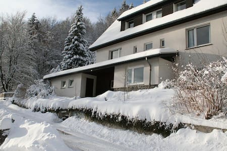 Charming Villa On The Forest Edge - Brilon