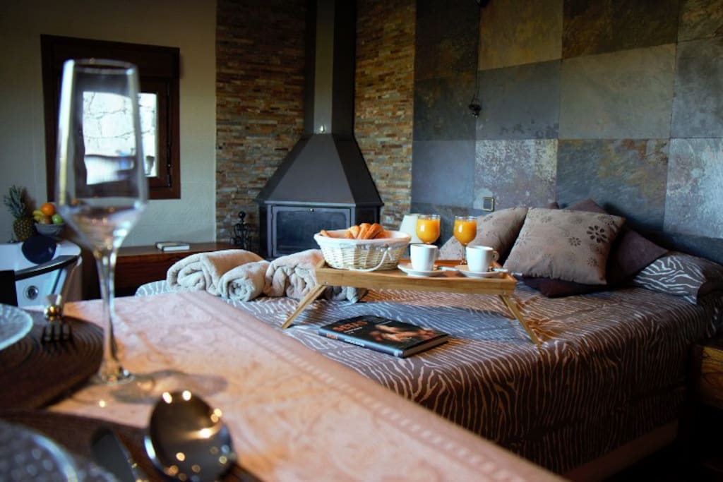 inside house - jacuzzi and fire place