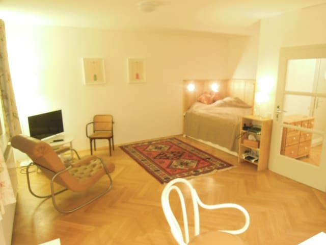 Cosy Studio at the Belvedere - Viena - Apartamento