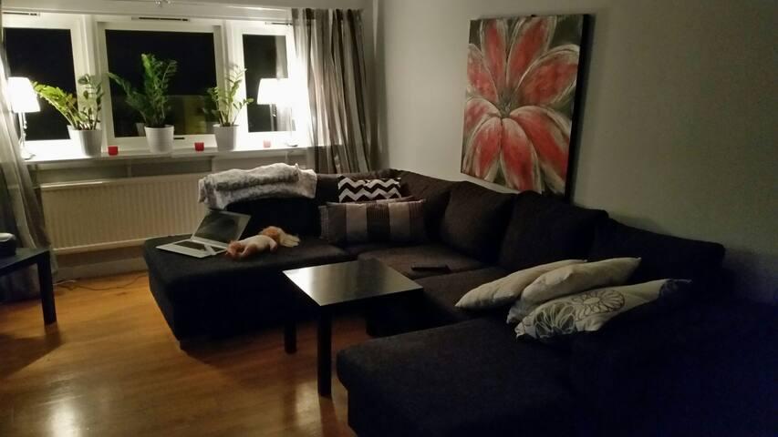 Mysig vindsvåning - Göteborg - Apartemen