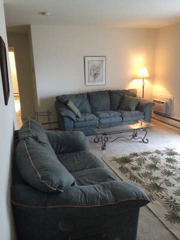 Fully Furnished 1 Bedroom apartment - Allentown - Apartment