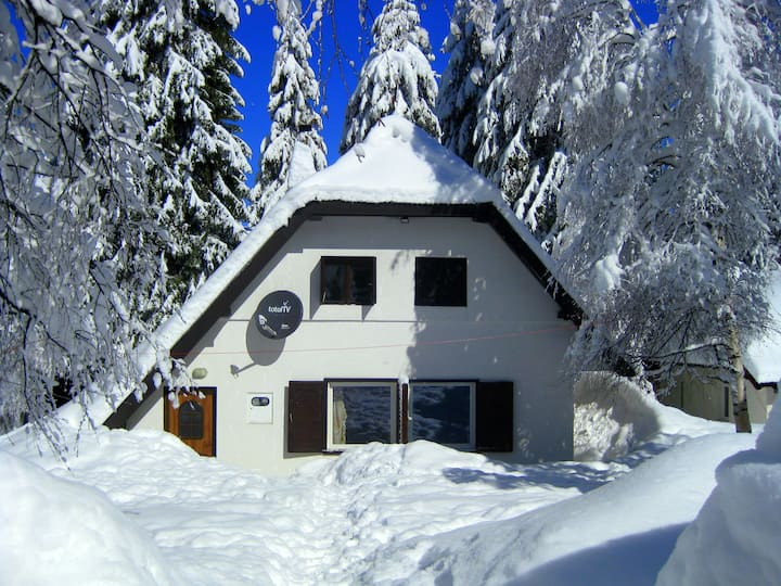 Villa Andrej  -center of ski resort