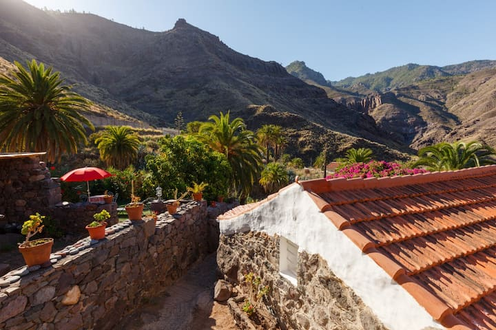 Casa la Pintora with nice garden - Agaete - Hus