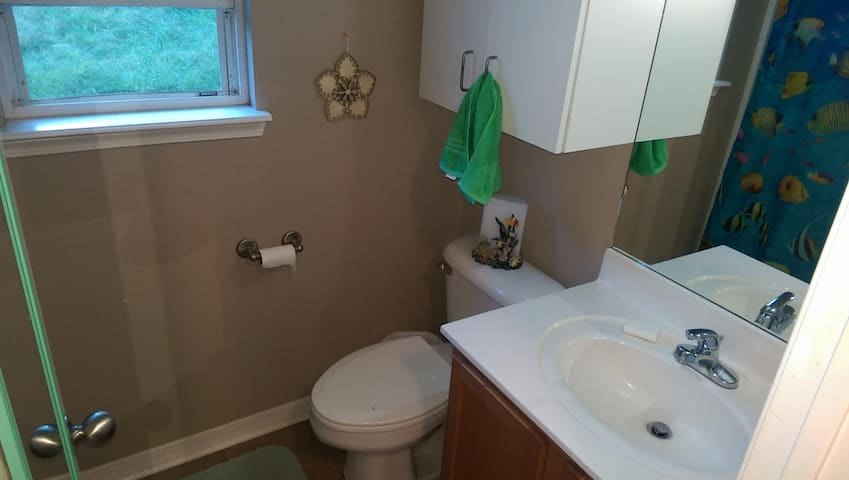 Bedroom In Home Available - Fayetteville - Dom