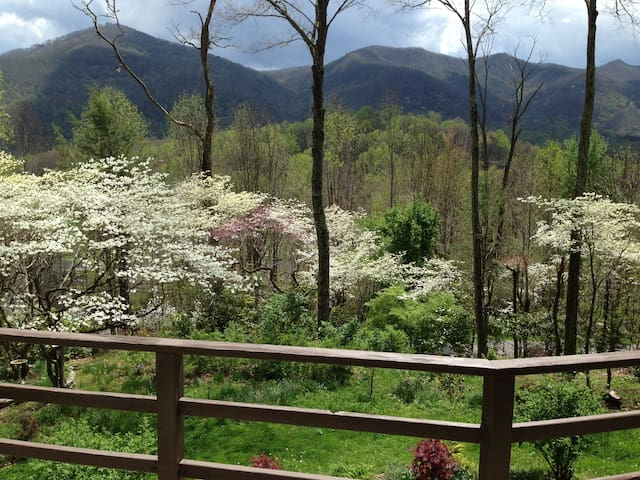 STONEY CREEK BUNGALOW - Maggie Valley - House