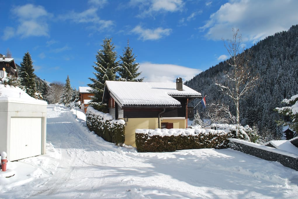 Chalet view with garage