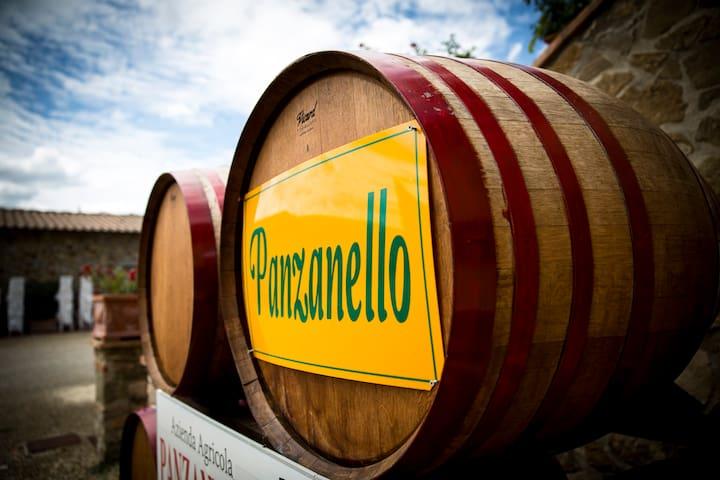 Apt.Panzanello-Panzano in Chianti