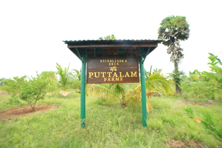 Puttalam Farm
