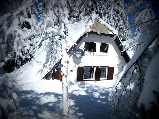 Apartment Andrej-next to ski lifts