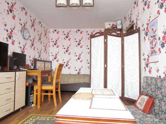ウスリースク市中心部のアパート(1LDK) - Ussuriysk - Pis