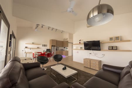 Luxurious One bedroom Penthouse - Apartment