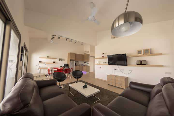 Luxurious One bedroom Penthouse Suite