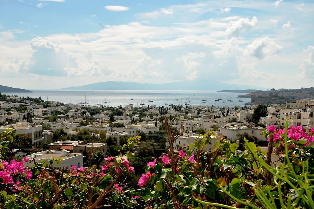 Our balcony with stunning views of nearby St. Peter's Castle and the Greek island of Kos