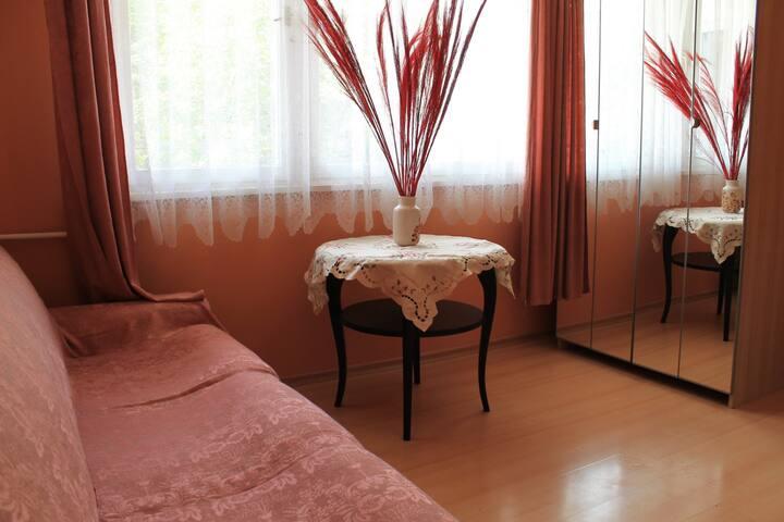 Entire home-great location in Sofia