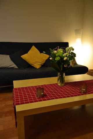 Nice and cosy apartment close to ZH - Oberengstringen - Daire