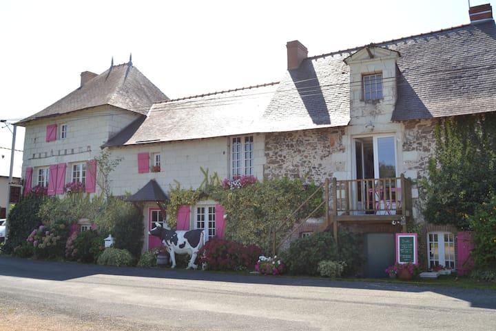 Logis au Fil de l'Eau (face Loire)