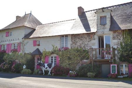Logis au Fil de l'Eau (face Loire) - Chalonnes sur Loire  - อพาร์ทเมนท์