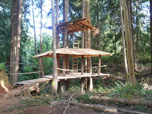 The Stump House: SunRay Kelley - Sedro-Woolley - 樹屋
