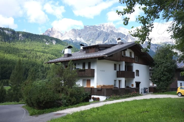 Nice apartment in Cortina - Cortina d'Ampezzo - 公寓