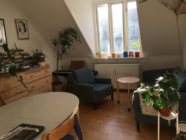 Cosy flat ten minutes walk from central station
