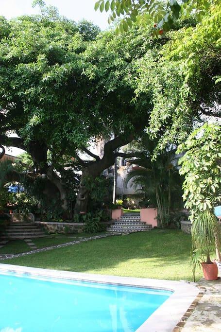 Nuestro Jardin para descansar