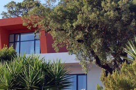 Vinha do Gaio - - Casais - Bed & Breakfast