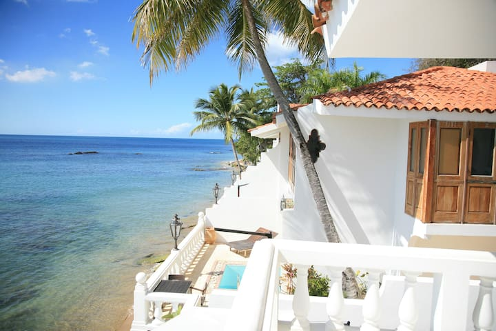 Direct Oceanfront Duplex Suite - in Luxury Resort - Rincón - Villa