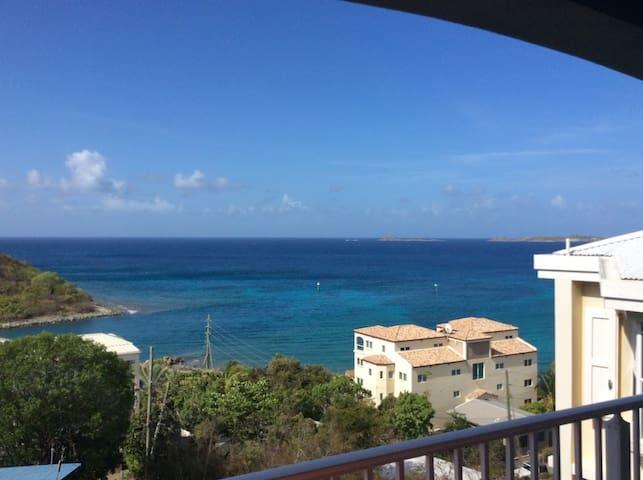 Luxury 2 Bed/2 Bath, Ocean View, Pool, Walk2Town!