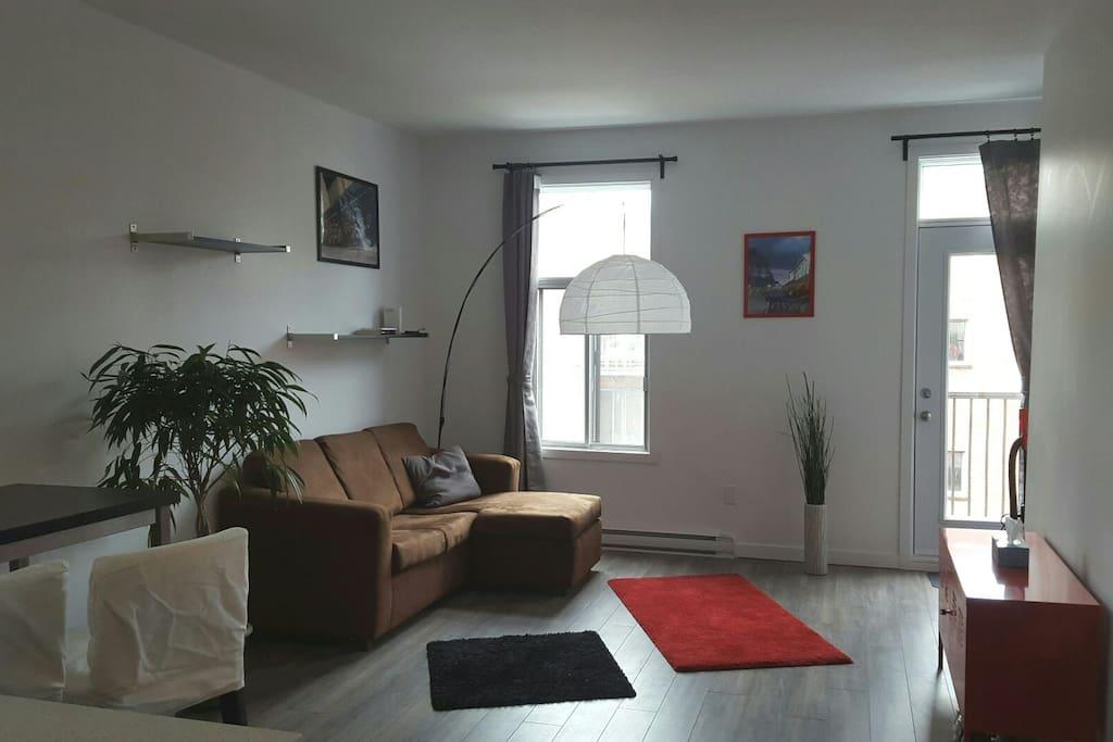Joli appartement avec 1 chambre a louer st henri for Chambre a louer montreal