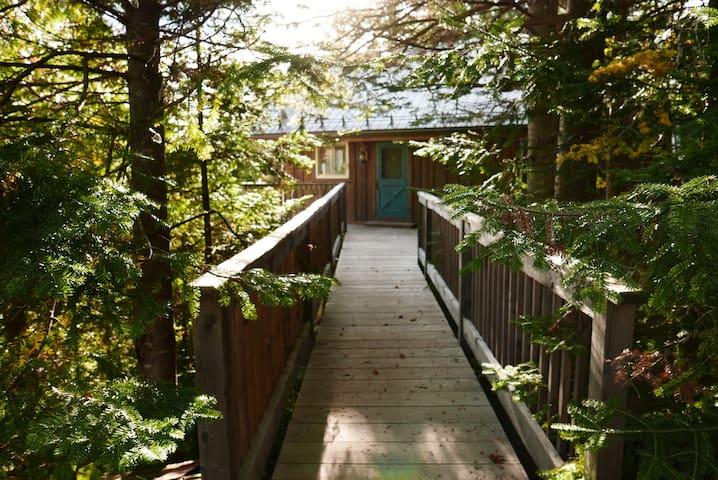 Superbe havre de paix dans la forêt - Val-David - House