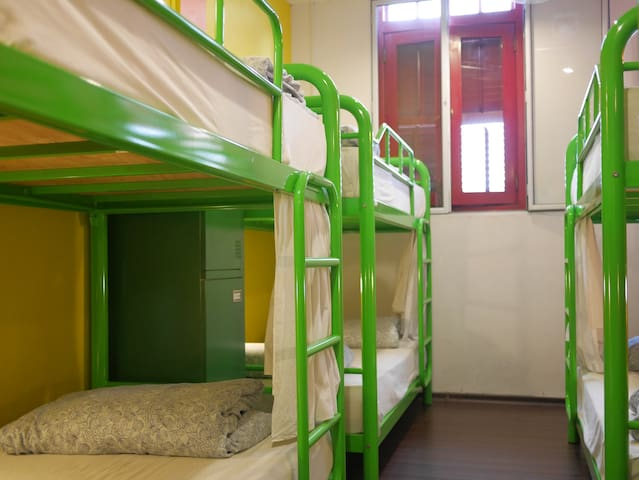 Beary's 8 Bed Mixed Dorm