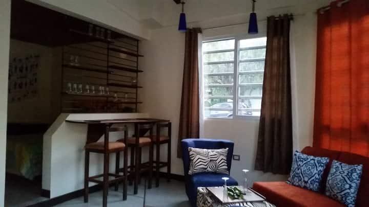 Apartamentos 101 Escalón.
