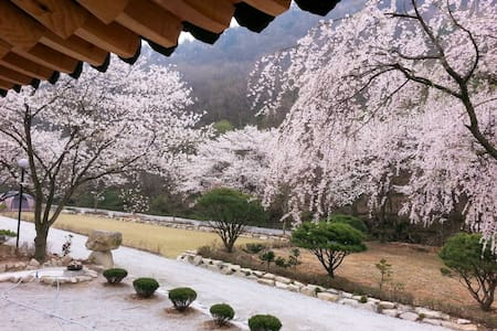 호연재 한옥-다운방 - Wanju-gun - Villa